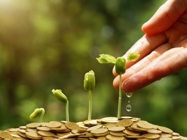 Предпринимателей приглашают оценить инвестклимат в Приморье